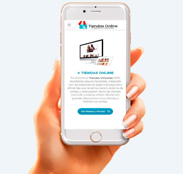 servicio de tiendas online